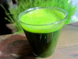 wheatgrass-shot-close-up